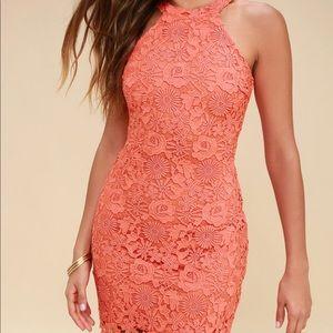 Lulu's Love Poem coral lace halter dress